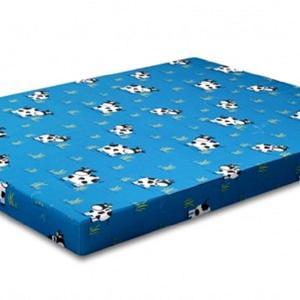 royal_foam_kasur_busa_royal_pioneer_90x200_biru-1