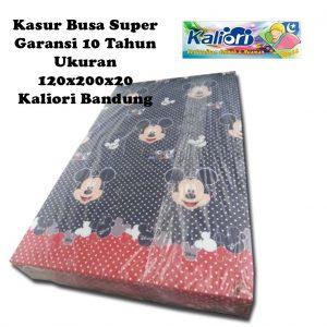 Kasur Busa Super Ukuran 120x200x20 Motif Mickey Mouse