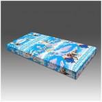 Kasur Busa Super Frozen 90
