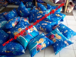 Bantal Silicon Frozen